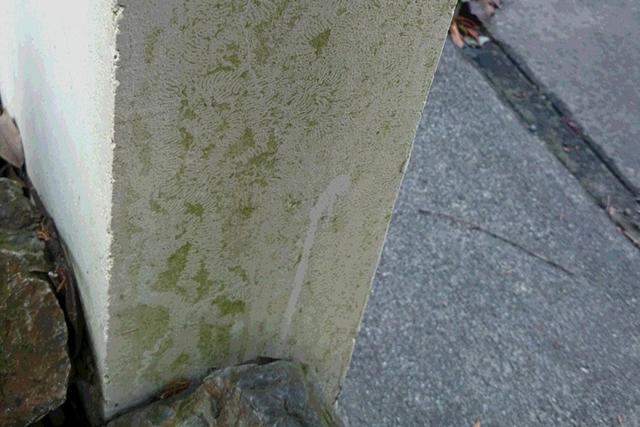 【清掃前】苔や汚れが目立つ柱
